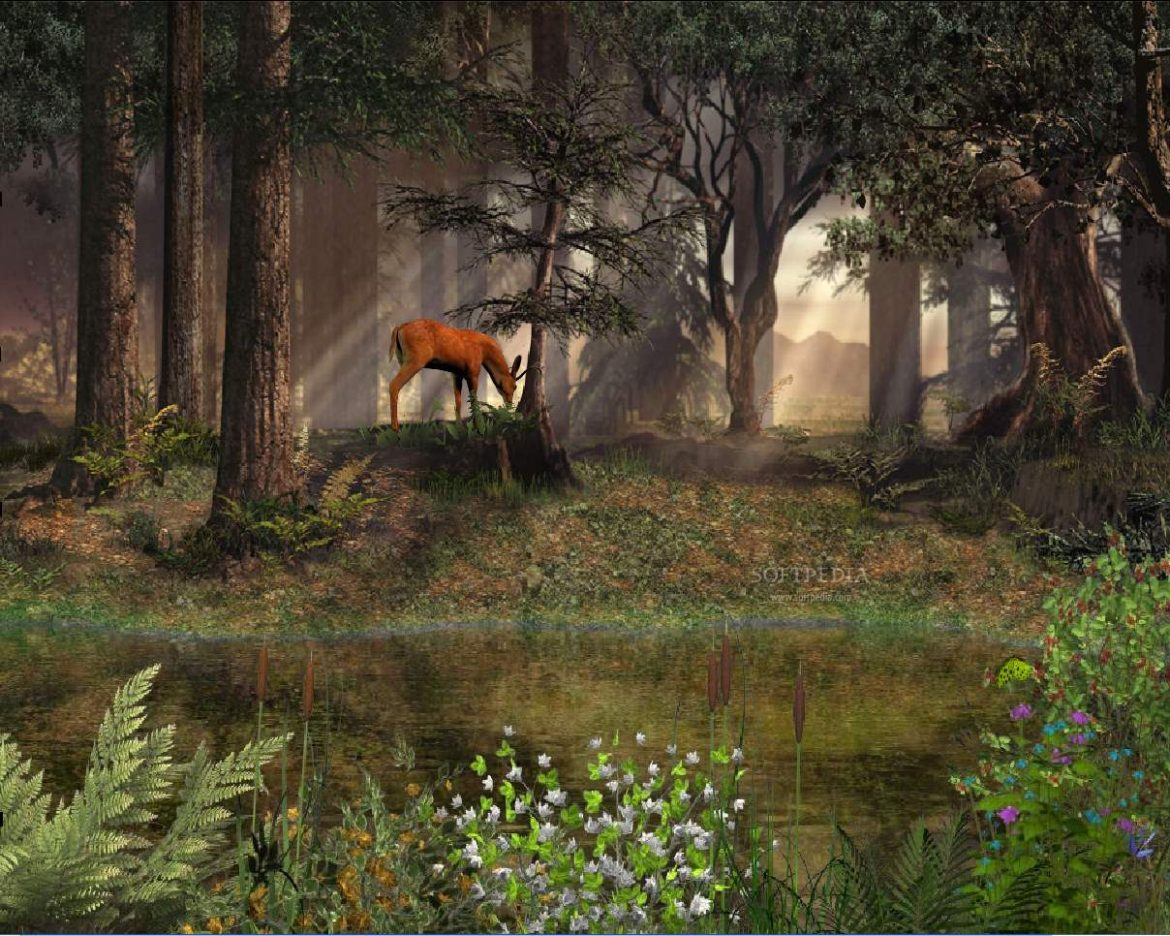 Deep-in-the-Forest-Animated-Wallpaper_1.jpg