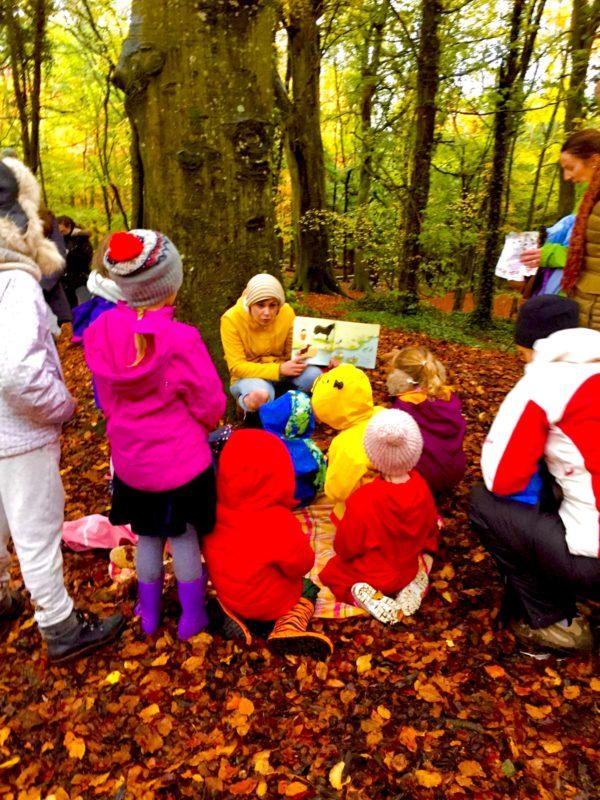 EJ Reading Wild Water Race Under Beech Tree