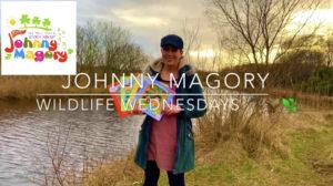Wildlife Wednesdays Johnny Magory World Emma-Jane Leeson