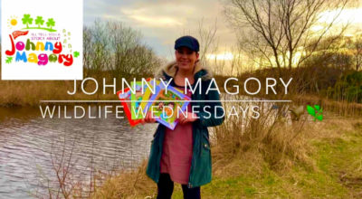 Wildlife Wednesdays Johnny Magory World Emma-Jane Leeson