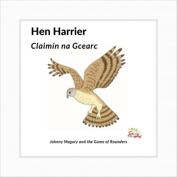 Johnny Magory Hen Harrier