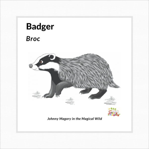 Johnny Magory Badger black