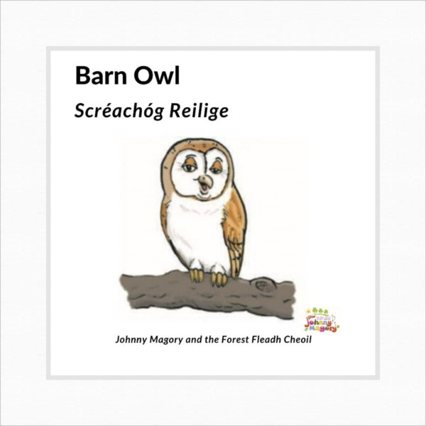 Johnny Magory Barn Owl