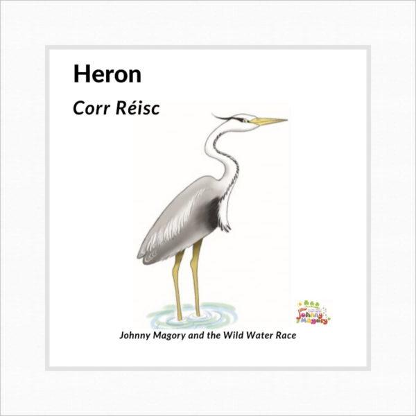 Johnny Magory Heron