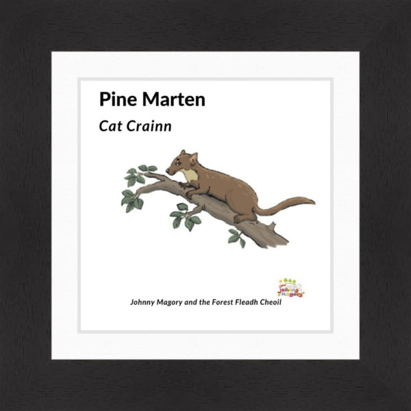 Johnny Magory Pine Marten Black