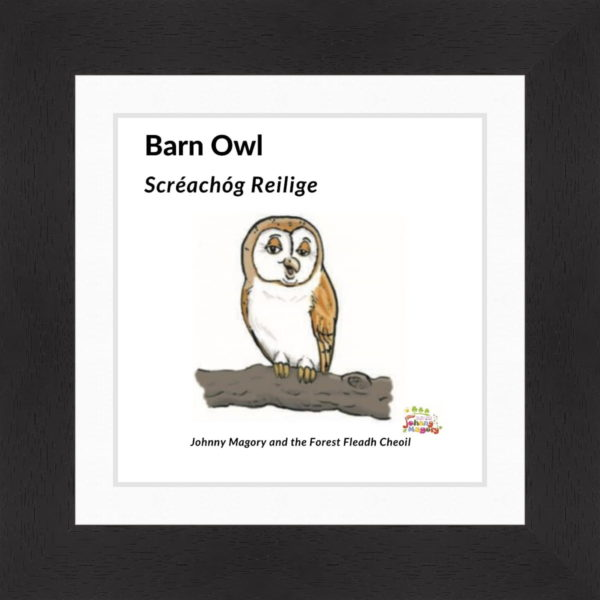 Johnny Magory Barn Owl Black