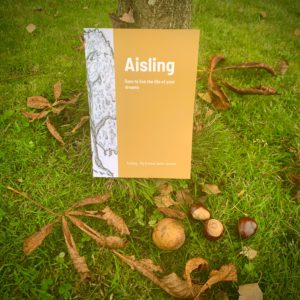 Aisling Paperback Emma-Jane Leeson