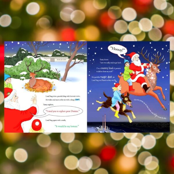 The Christmas Book Oíche Nollag Johnny Magory